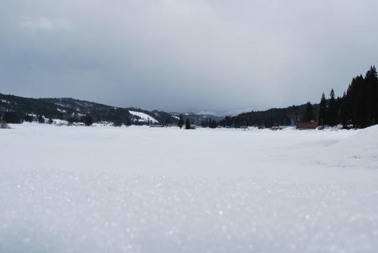 2012/03/24 21:03/【玉庭ひなめぐり】玉庭風景