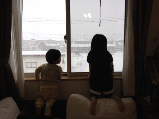2012/01/31 08:05/●今朝も朝から大雪のいわて花巻(-。-;