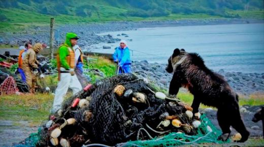 ヒグマと漁師:2020/06/15 07:40