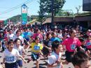 「【第40回全国白つつじマラソン..」画像