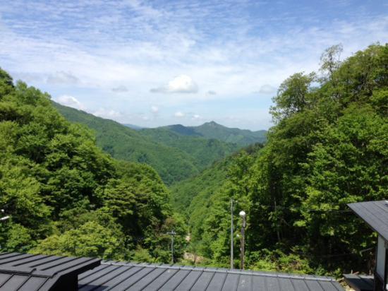 2013/06/02 11:31/西吾妻山にグリーン季到来!