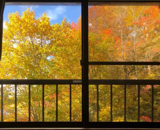 2019/10/23 18:00/紅葉ってドコからがキレイ? 「まぁ 昼寝してる窓から かな」 って言う(^_-)-☆