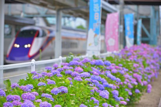 2020/11/09 18:01/[第1位]たかはた風景街道フォトコン夏 結果発表!