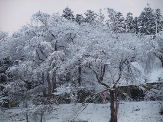2012/03/15 08:47/3月15日の烏帽子山の風景