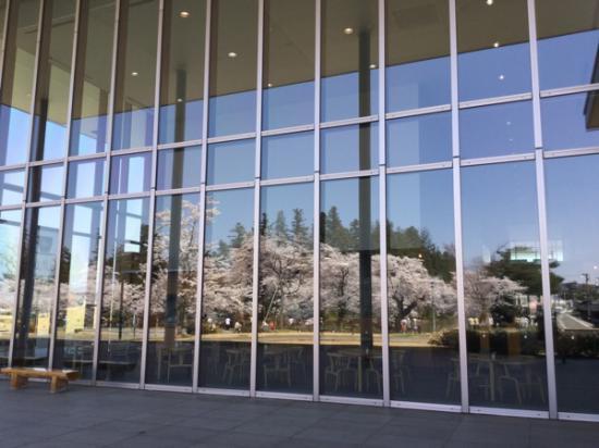 2015-4-23 伝国の杜に映る桜:2016/04/07 07:58
