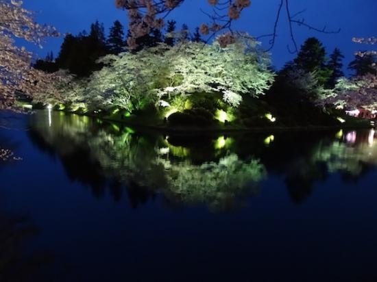 2018-4-17 夜桜:2018/04/17 20:37
