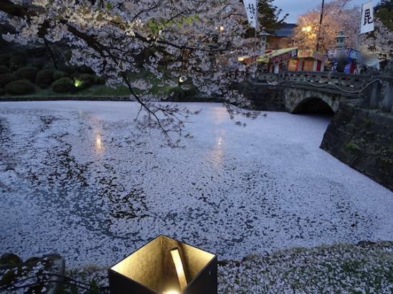 2019-4-25 上杉神社の桜:2019/04/26 09:00
