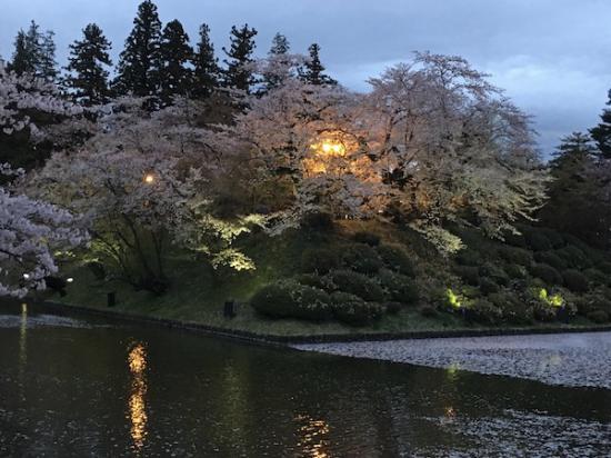 2019-4-25 上杉神社の桜:2019/04/26 09:01