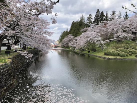 2020-4-28 上杉神社の桜:2020/04/28 12:00