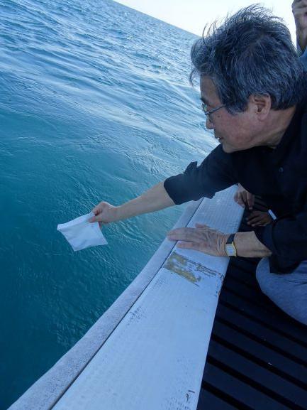 2018/12/02 10:20/妻はマンタ、いやジュゴンに変身し、サンゴ礁の海へ
