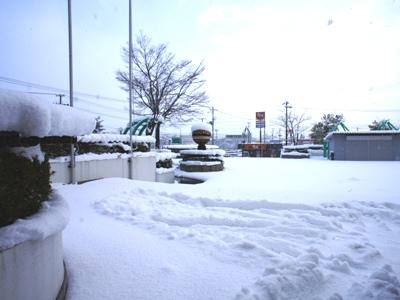 「【雪降った〜!】」画像