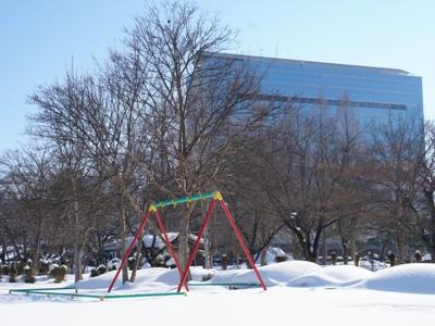 「【冬のつつじ公園】」画像