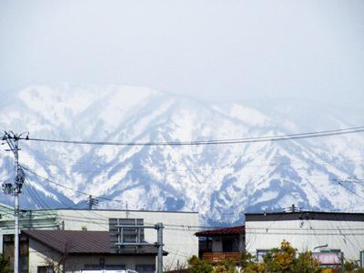 2017/03/22 16:00/【春よ来い】