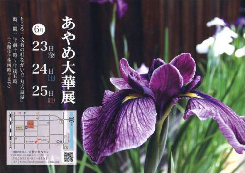 2017/06/19 14:30/【あやめ大華展 〜予告〜】