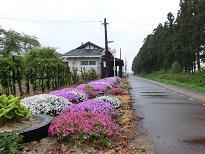 2013/07/20 14:08/停車場ノート'13−� 花の手入れご苦労さま