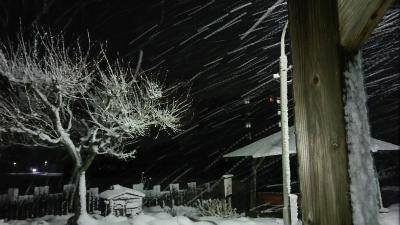 2017/02/10 11:16/停車場憧憬 吹雪の中で