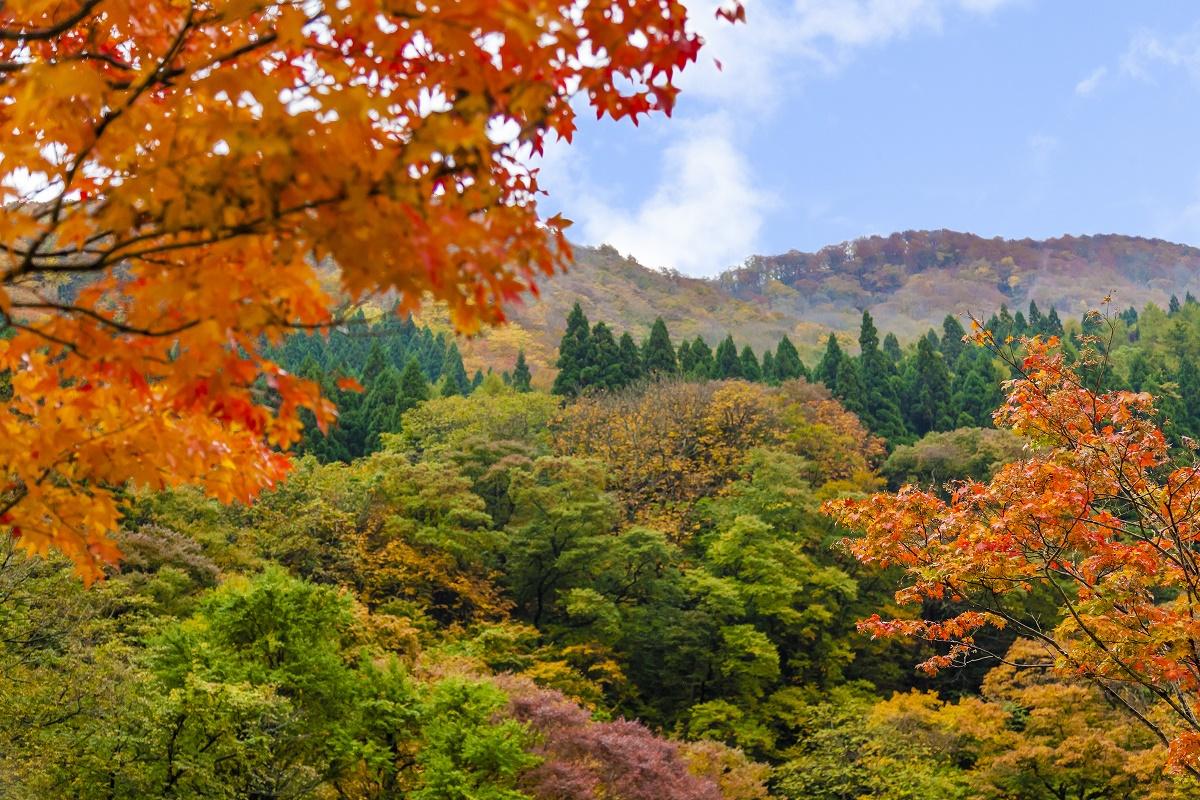 「瀬見温泉付近の紅葉時期」画像